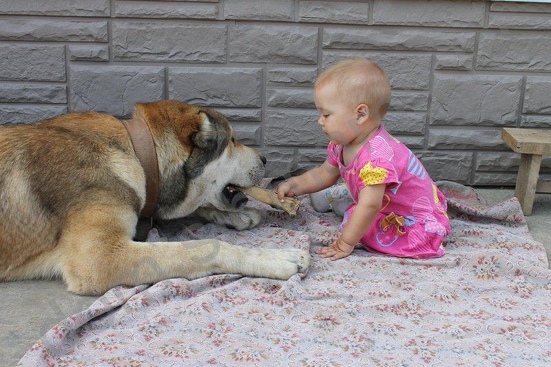 Гампр и малыш